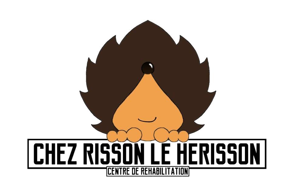 Chez Risson, le hérisson